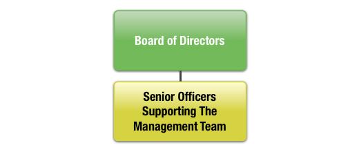 Board & Management